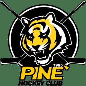 HC Piné U13